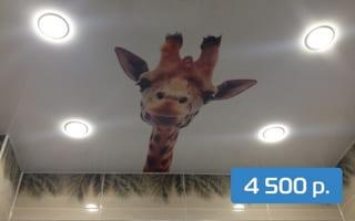 Натяжной потолок с фотопечатью в ванную комнату 4 м²